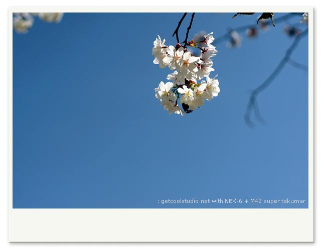 DSC08392-001.jpg